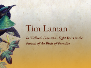6. The Alfred Russel Wallace Centennial Celebration – Tim Laman